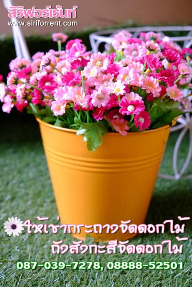 เช่าถังสังกะสีสำหรับจัดดอกไม้
